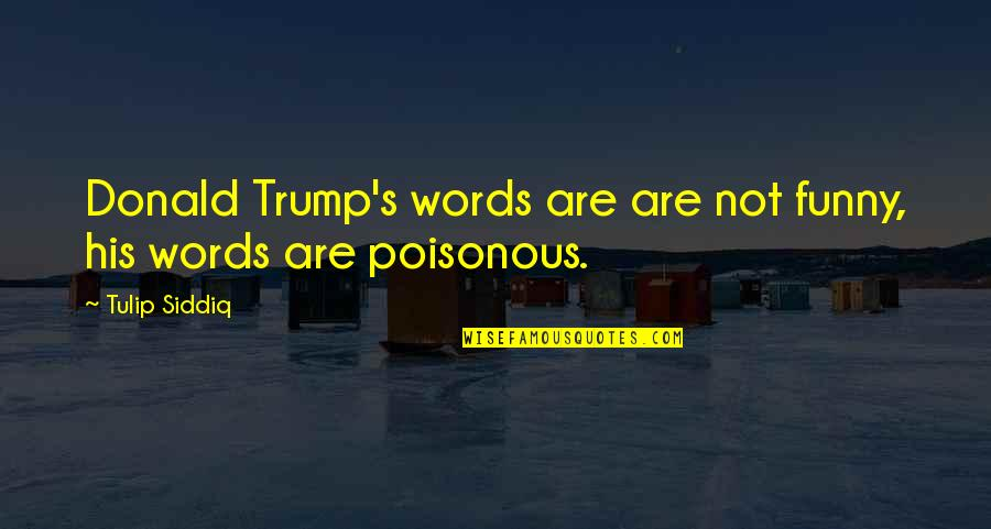 Ireland Weather Quotes By Tulip Siddiq: Donald Trump's words are are not funny, his