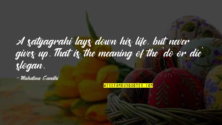 Irish Typical Quotes By Mahatma Gandhi: A satyagrahi lays down his life, but never