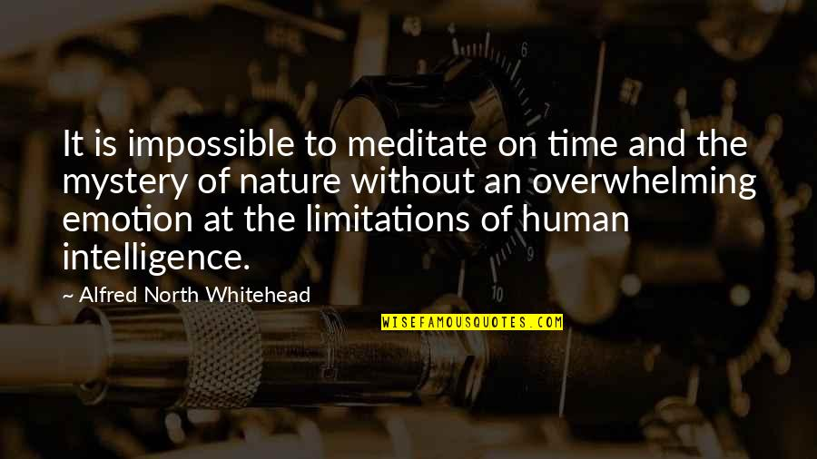Irrelevant Person Quotes By Alfred North Whitehead: It is impossible to meditate on time and