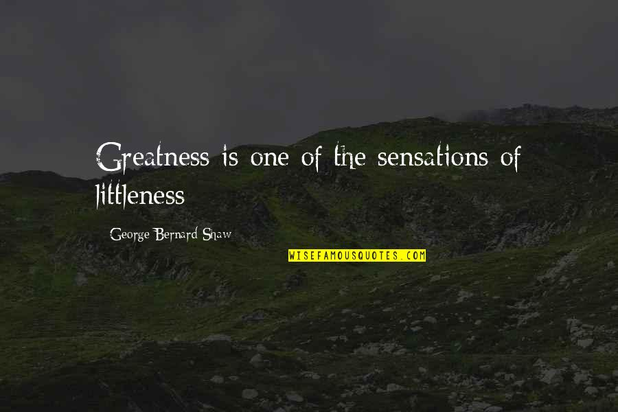 Irreverence Quotes By George Bernard Shaw: Greatness is one of the sensations of littleness