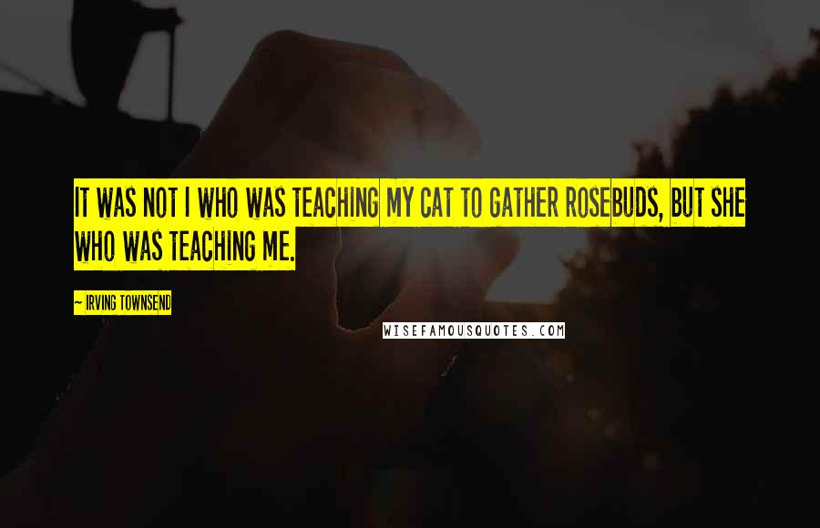 Irving Townsend quotes: It was not I who was teaching my cat to gather rosebuds, but she who was teaching me.