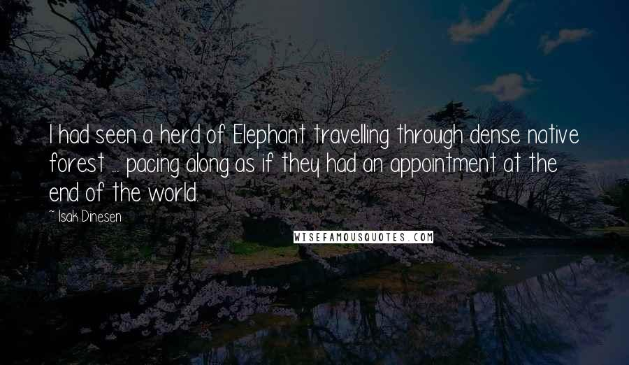 Isak Dinesen quotes: I had seen a herd of Elephant travelling through dense native forest ... pacing along as if they had an appointment at the end of the world.