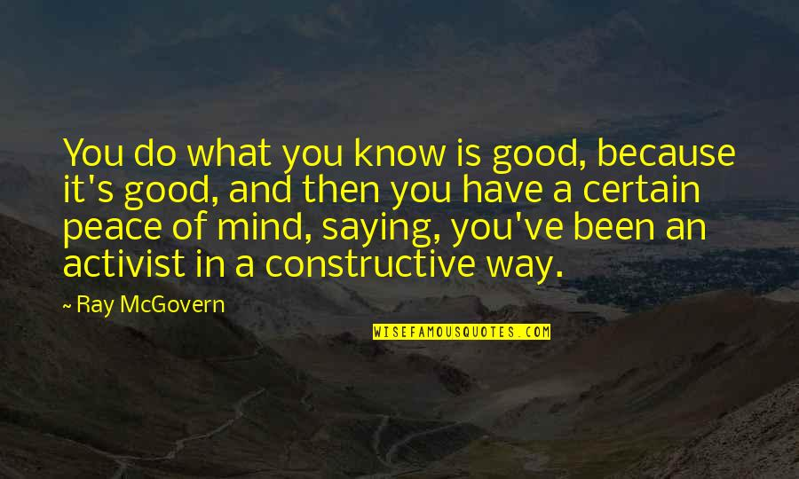 Islam Is A Religion Of Peace Quotes By Ray McGovern: You do what you know is good, because