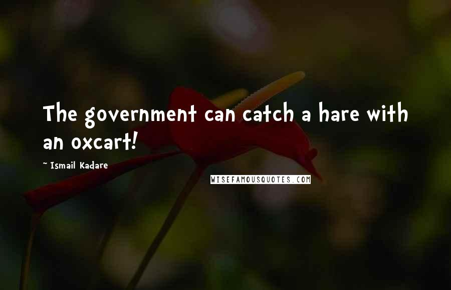 Ismail Kadare quotes: The government can catch a hare with an oxcart!