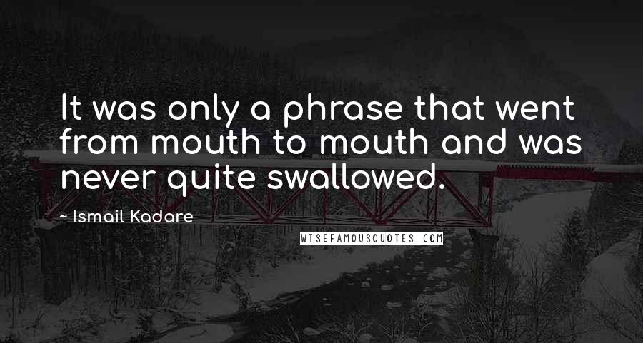 Ismail Kadare quotes: It was only a phrase that went from mouth to mouth and was never quite swallowed.
