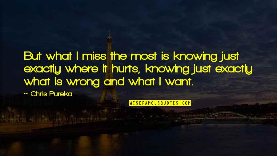 It Hurts But Quotes By Chris Pureka: But what I miss the most is knowing