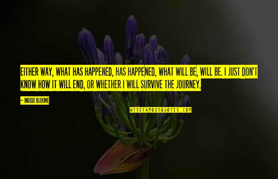It Just Happened Quotes By Indigo Bloome: Either way, what has happened, has happened, what