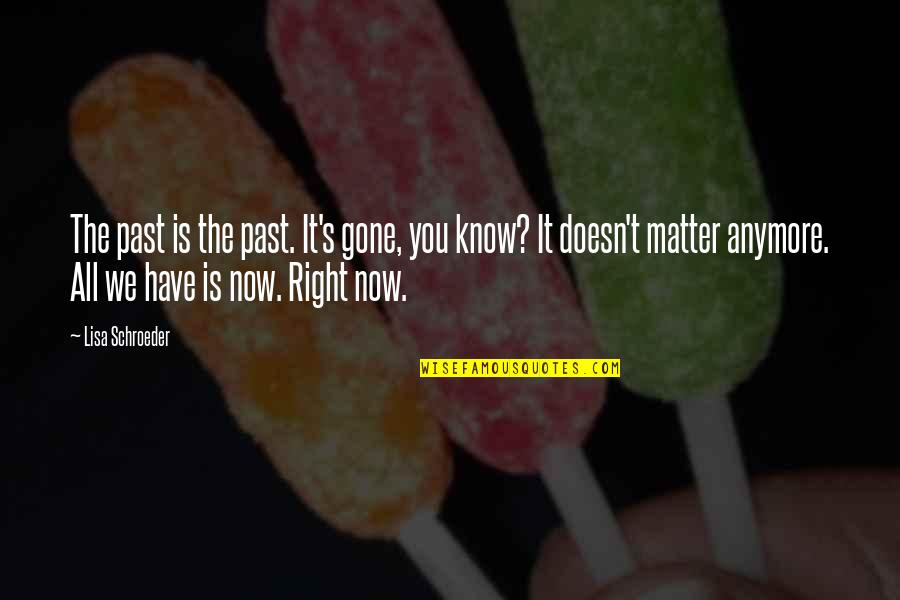 It Really Doesn't Matter Anymore Quotes By Lisa Schroeder: The past is the past. It's gone, you