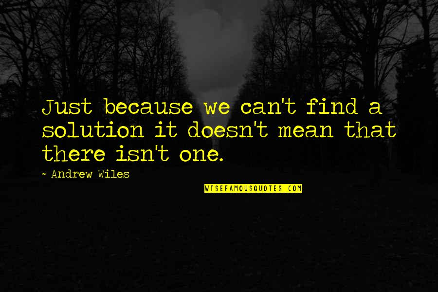 It Solution Quotes By Andrew Wiles: Just because we can't find a solution it