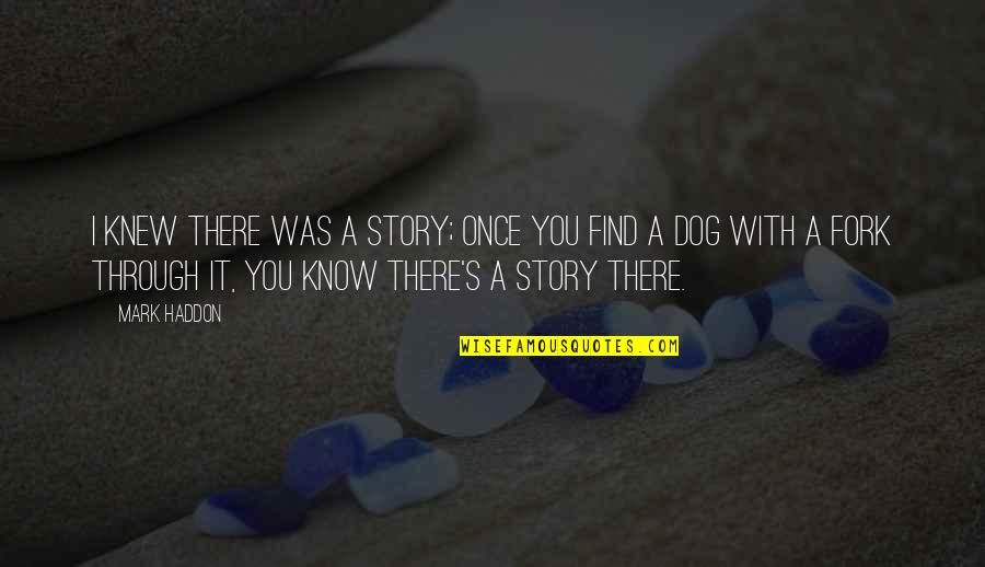 It Was You Quotes By Mark Haddon: I knew there was a story; once you