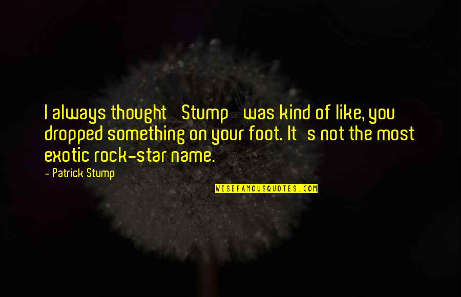 It Was You Quotes By Patrick Stump: I always thought 'Stump' was kind of like,