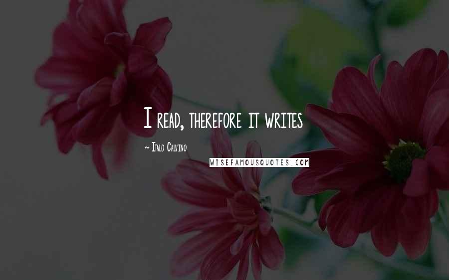 Italo Calvino quotes: I read, therefore it writes