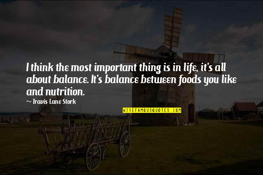 It's All About Balance Quotes By Travis Lane Stork: I think the most important thing is in