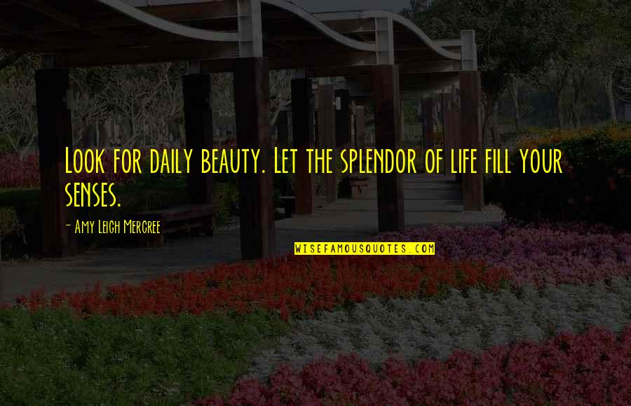 It's All Over Now Tumblr Quotes By Amy Leigh Mercree: Look for daily beauty. Let the splendor of