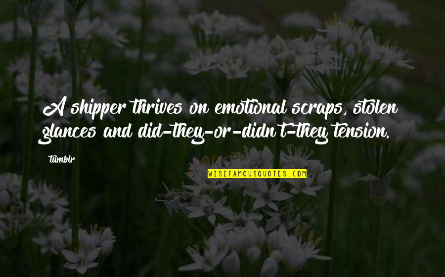 It's All Over Now Tumblr Quotes By Tumblr: A shipper thrives on emotional scraps, stolen glances
