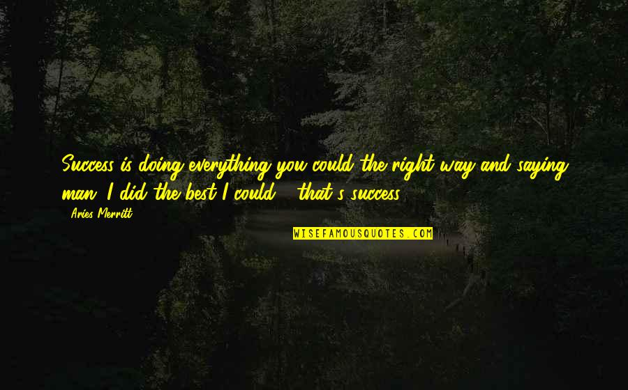 It's Been A Year Since Quotes By Aries Merritt: Success is doing everything you could the right