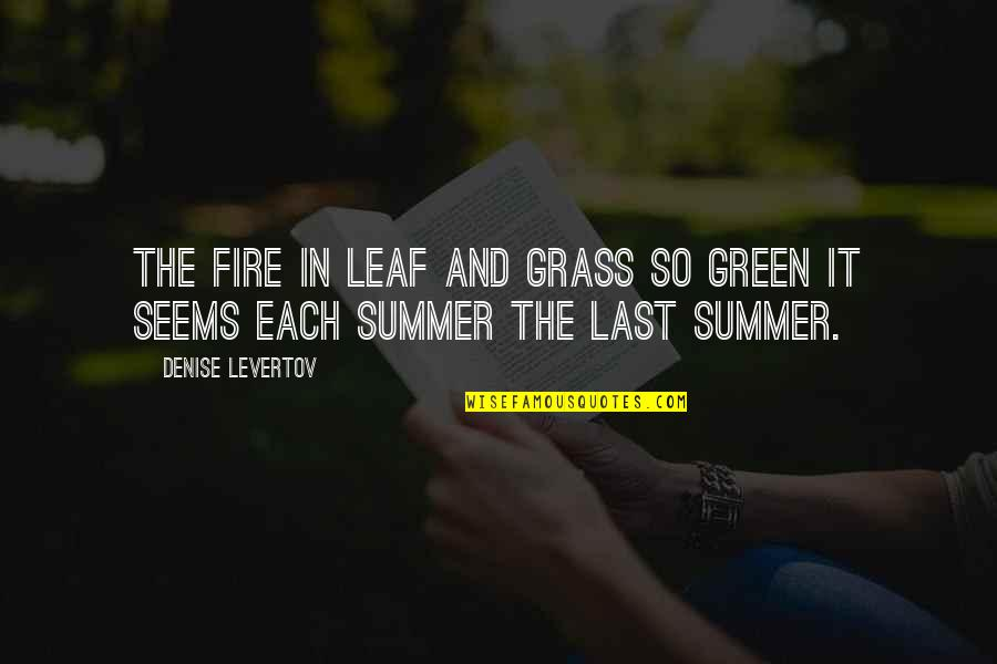 It's Not Summer Without You Quotes By Denise Levertov: The fire in leaf and grass so green