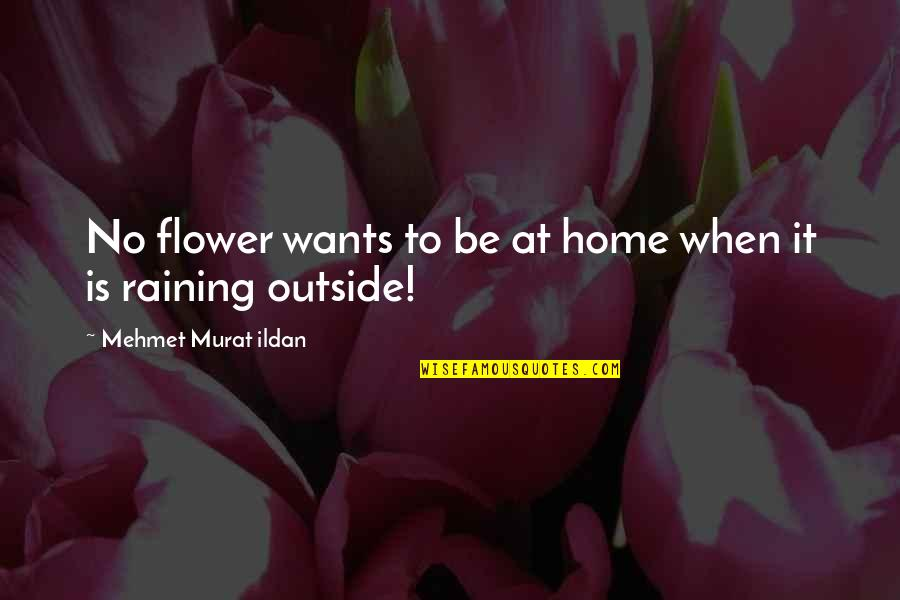 It's Raining Outside Quotes By Mehmet Murat Ildan: No flower wants to be at home when