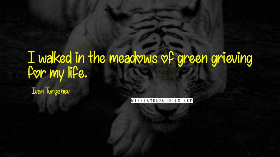 Ivan Turgenev quotes: I walked in the meadows of green grieving for my life.
