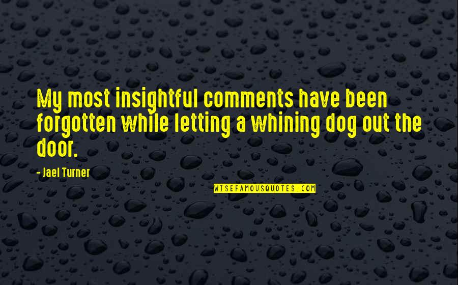 I've Been Forgotten Quotes By Jael Turner: My most insightful comments have been forgotten while