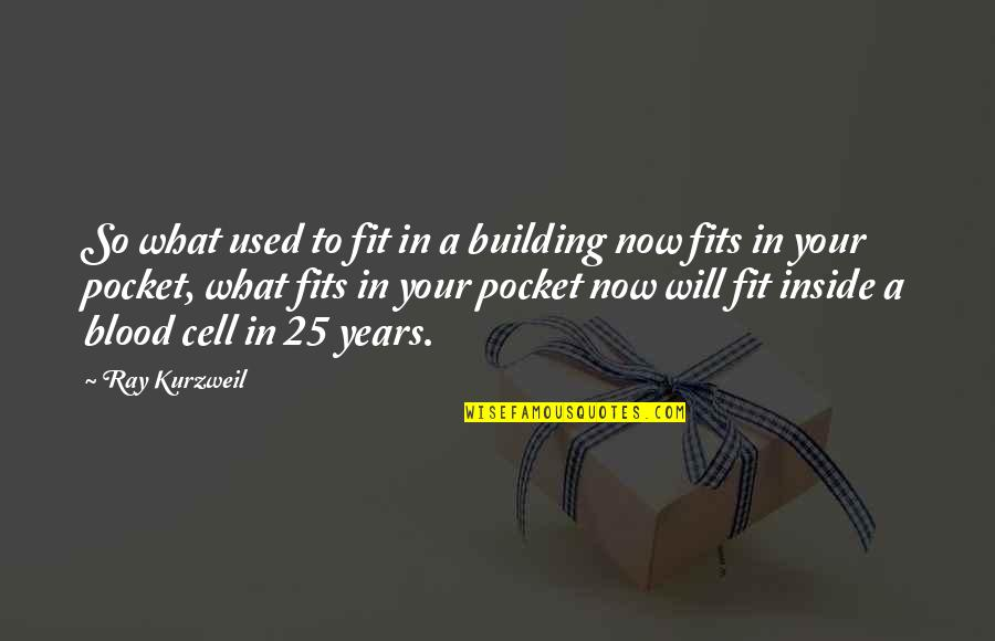 Iyi Quotes By Ray Kurzweil: So what used to fit in a building