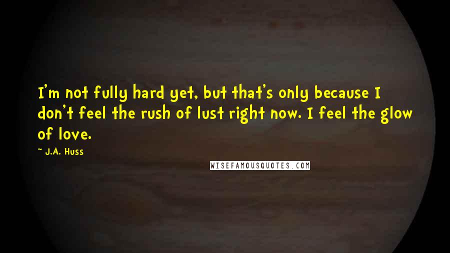 J.A. Huss quotes: I'm not fully hard yet, but that's only because I don't feel the rush of lust right now. I feel the glow of love.