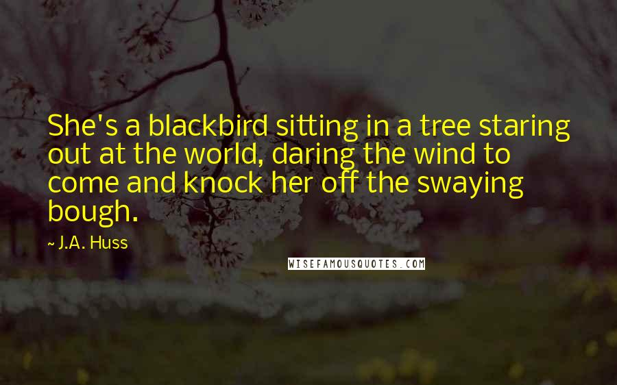J.A. Huss quotes: She's a blackbird sitting in a tree staring out at the world, daring the wind to come and knock her off the swaying bough.