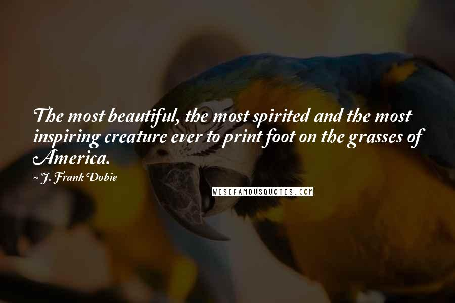 J. Frank Dobie quotes: The most beautiful, the most spirited and the most inspiring creature ever to print foot on the grasses of America.