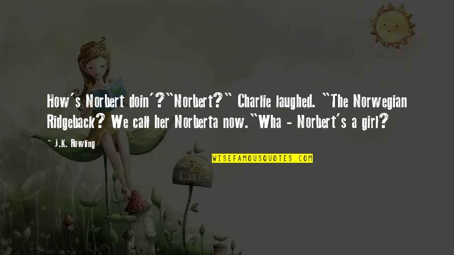 """J.k.nyerere Quotes By J.K. Rowling: How's Norbert doin'?""""Norbert?"""" Charlie laughed. """"The Norwegian Ridgeback?"""