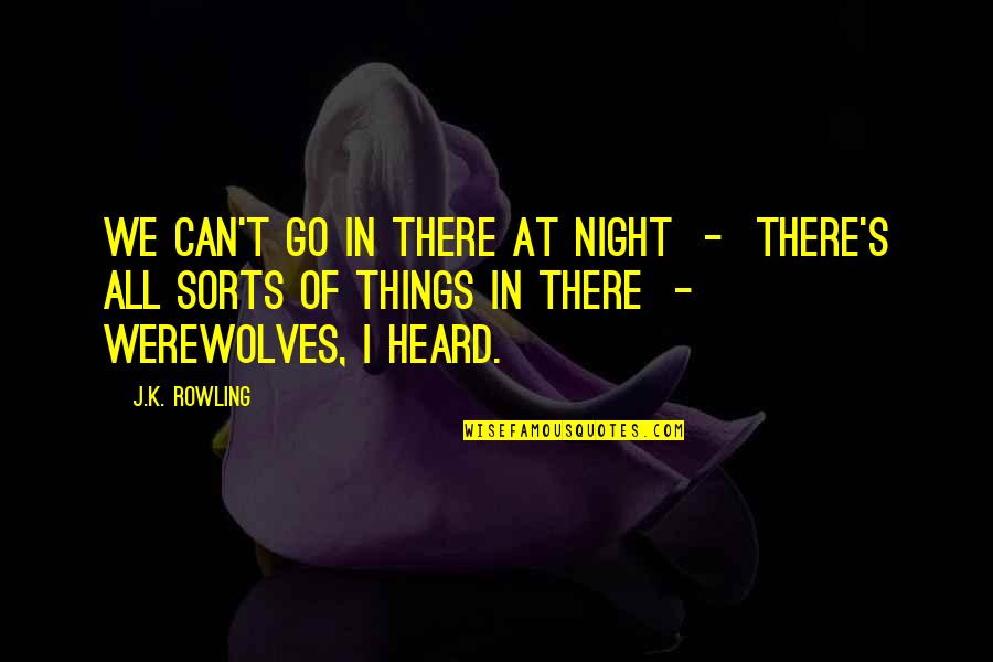 J.k.nyerere Quotes By J.K. Rowling: We can't go in there at night -