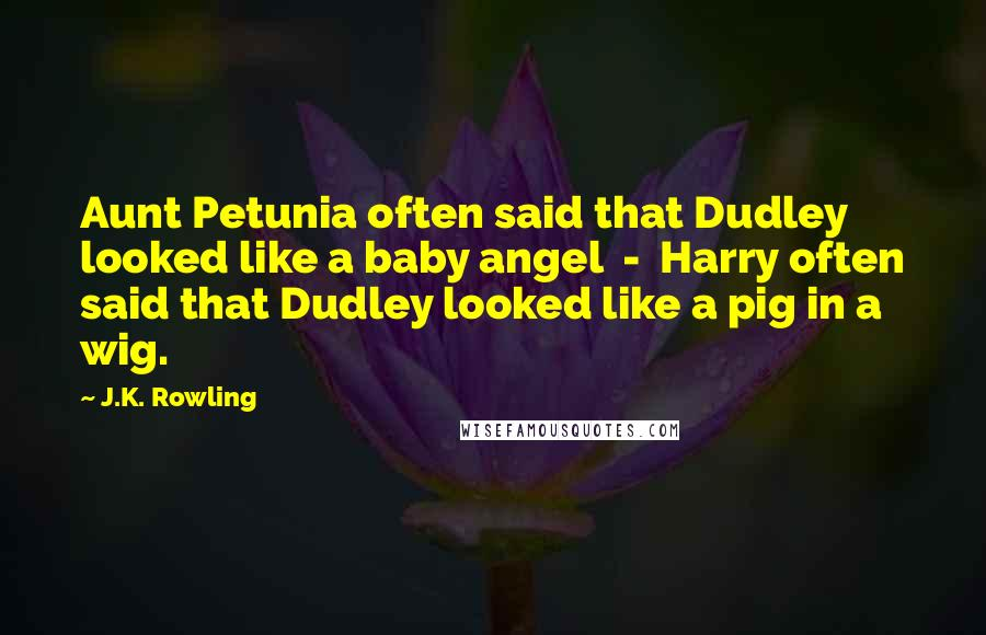 J.K. Rowling quotes: Aunt Petunia often said that Dudley looked like a baby angel - Harry often said that Dudley looked like a pig in a wig.