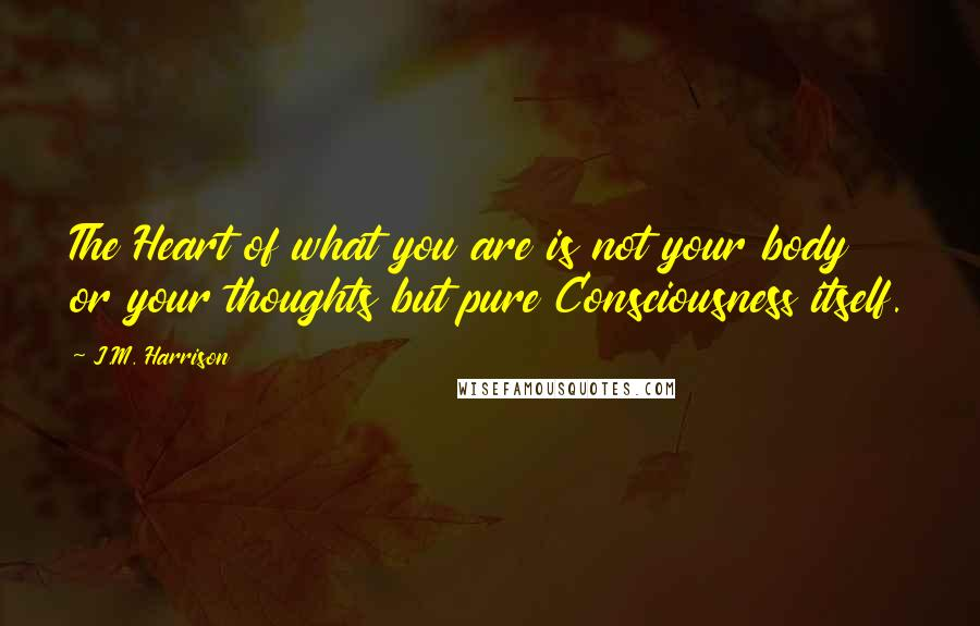 J.M. Harrison quotes: The Heart of what you are is not your body or your thoughts but pure Consciousness itself.
