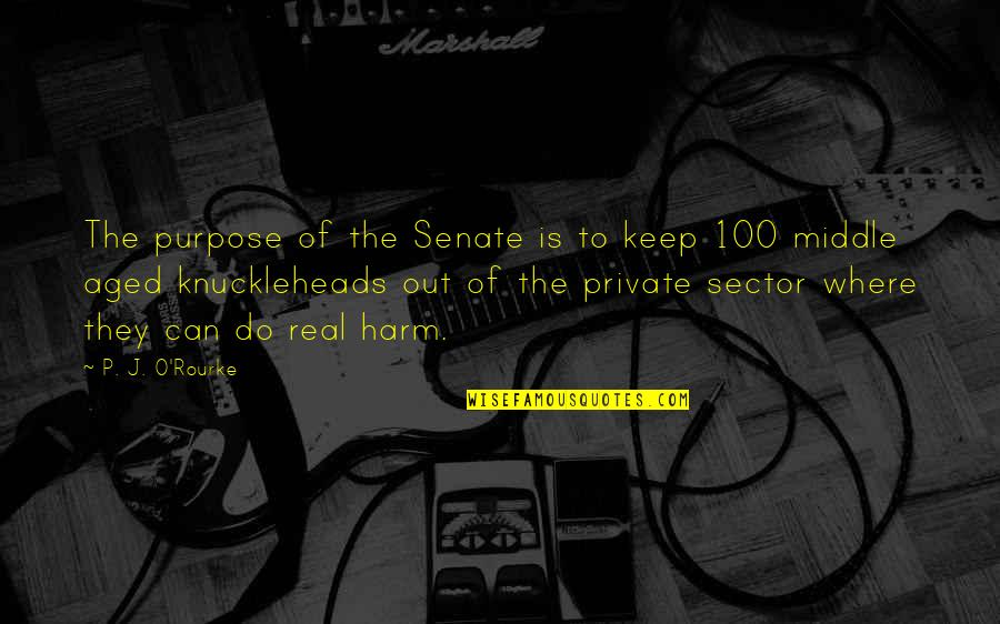 J O'rourke Quotes By P. J. O'Rourke: The purpose of the Senate is to keep