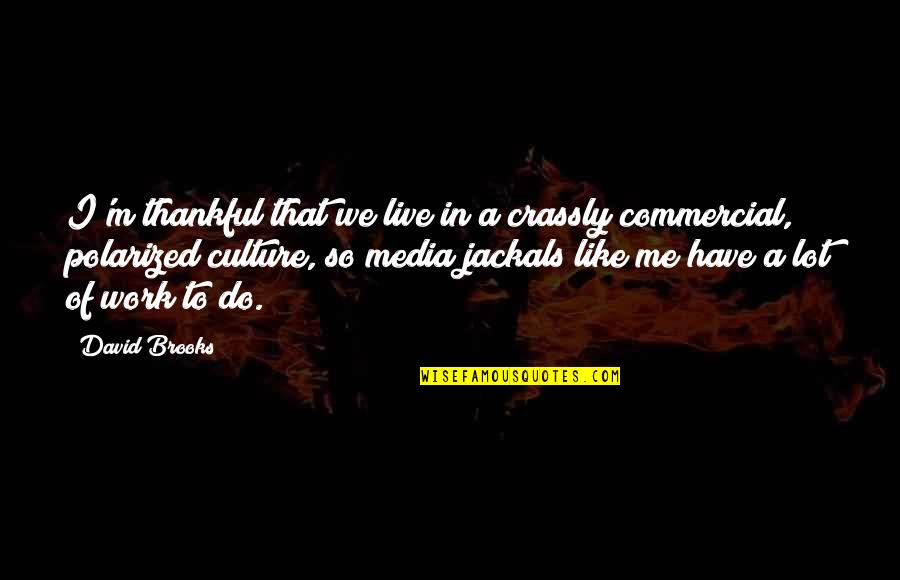 Jackals Quotes By David Brooks: I'm thankful that we live in a crassly
