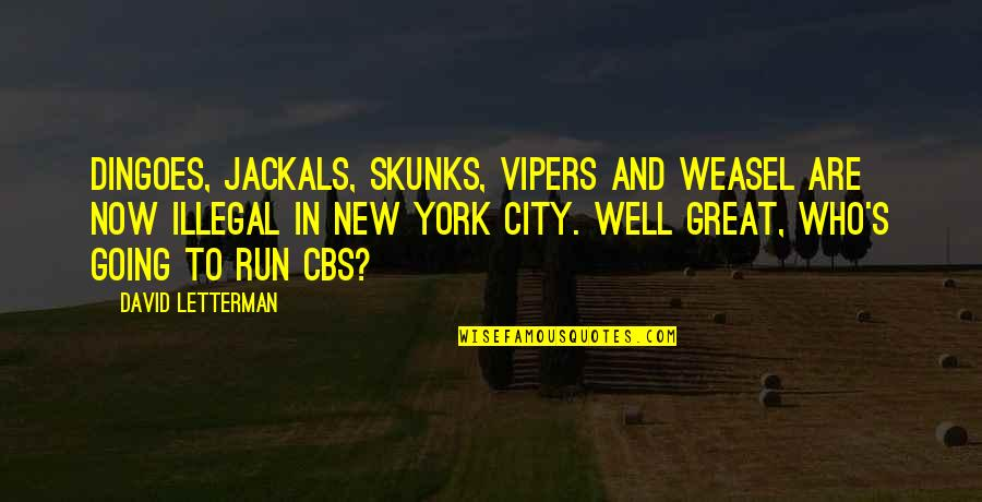 Jackals Quotes By David Letterman: Dingoes, jackals, skunks, vipers and weasel are now