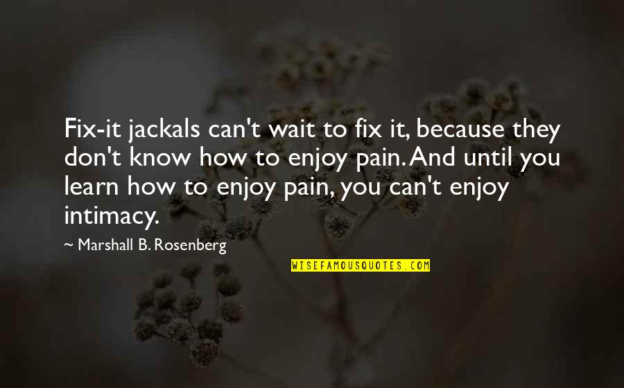 Jackals Quotes By Marshall B. Rosenberg: Fix-it jackals can't wait to fix it, because