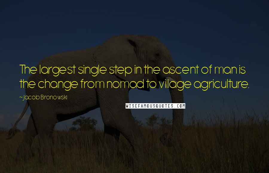 Jacob Bronowski quotes: The largest single step in the ascent of man is the change from nomad to village agriculture.