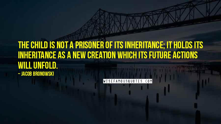 Jacob Bronowski quotes: The child is not a prisoner of its inheritance; it holds its inheritance as a new creation which its future actions will unfold.