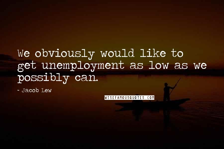 Jacob Lew quotes: We obviously would like to get unemployment as low as we possibly can.