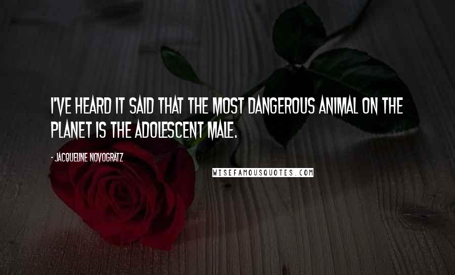Jacqueline Novogratz quotes: I've heard it said that the most dangerous animal on the planet is the adolescent male.