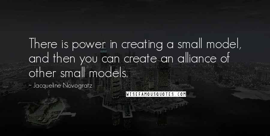 Jacqueline Novogratz quotes: There is power in creating a small model, and then you can create an alliance of other small models.