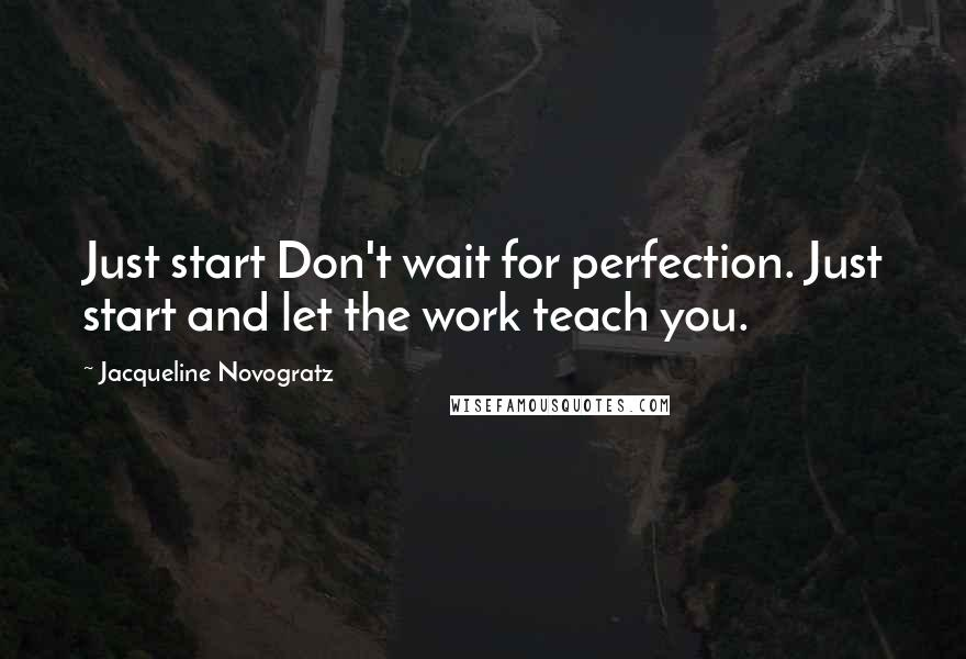 Jacqueline Novogratz quotes: Just start Don't wait for perfection. Just start and let the work teach you.
