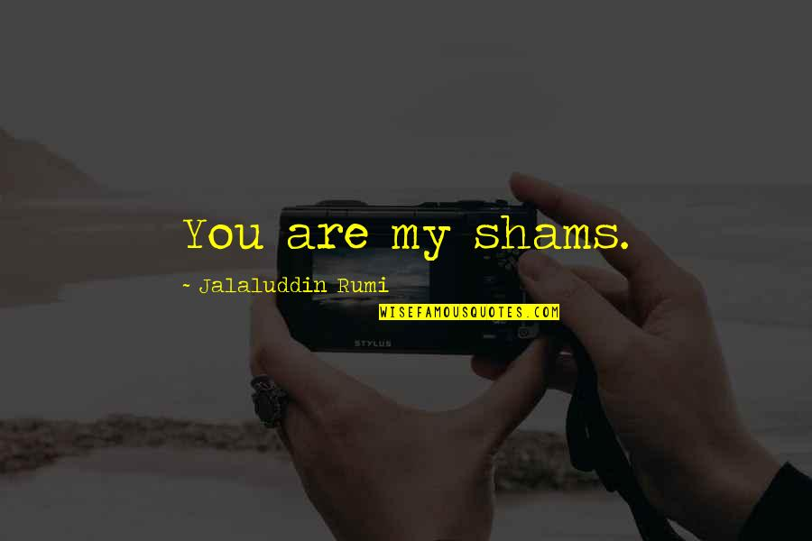 Jalaluddin Quotes By Jalaluddin Rumi: You are my shams.