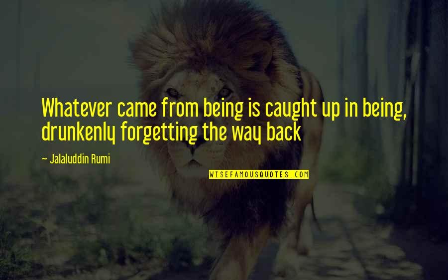 Jalaluddin Quotes By Jalaluddin Rumi: Whatever came from being is caught up in