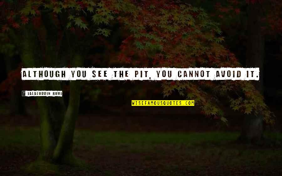 Jalaluddin Quotes By Jalaluddin Rumi: Although you see the pit, you cannot avoid