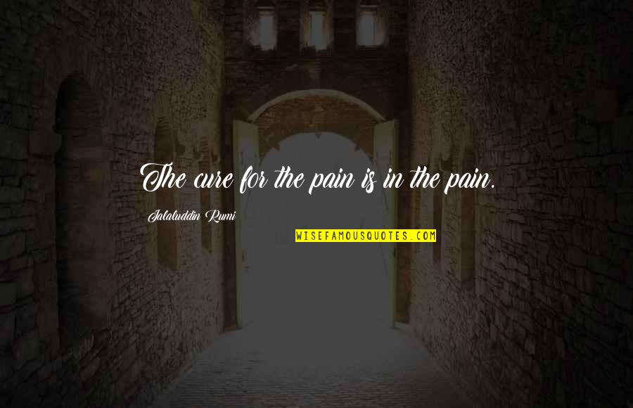 Jalaluddin Quotes By Jalaluddin Rumi: The cure for the pain is in the