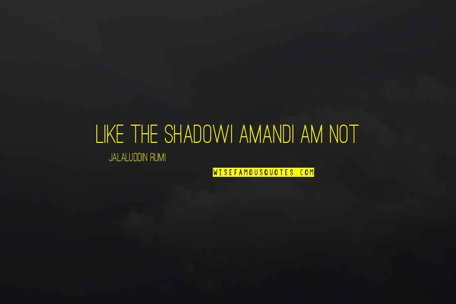 Jalaluddin Quotes By Jalaluddin Rumi: Like the shadowI amandI am not