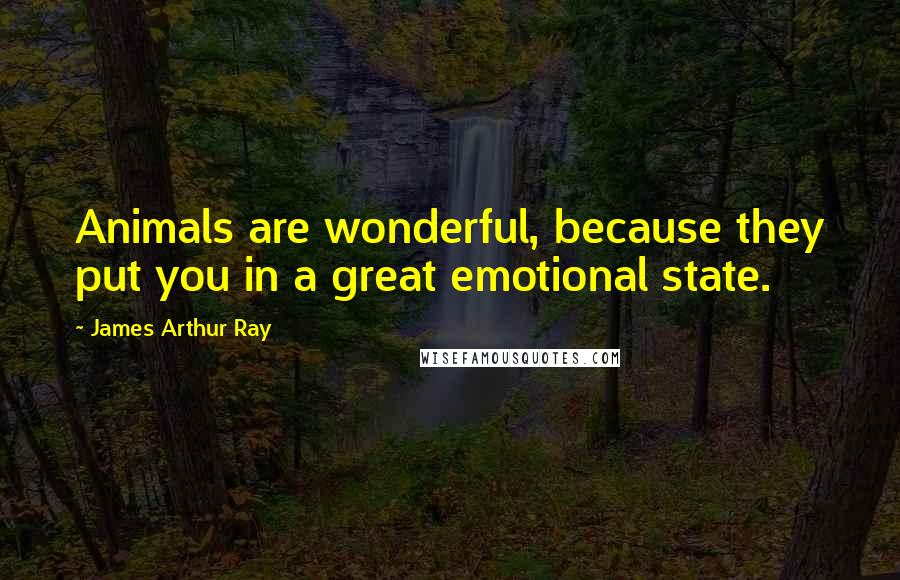 James Arthur Ray quotes: Animals are wonderful, because they put you in a great emotional state.