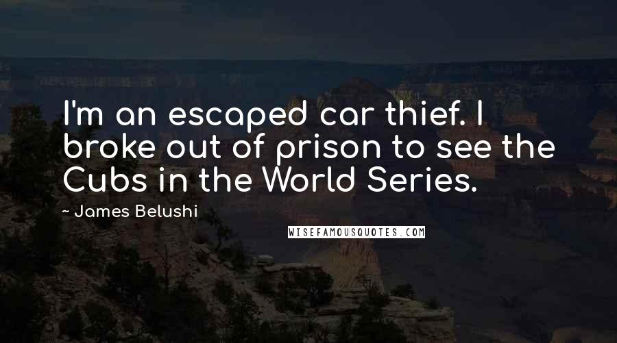 James Belushi quotes: I'm an escaped car thief. I broke out of prison to see the Cubs in the World Series.