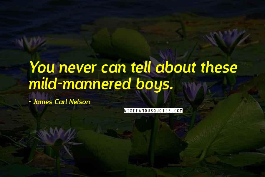 James Carl Nelson quotes: You never can tell about these mild-mannered boys.